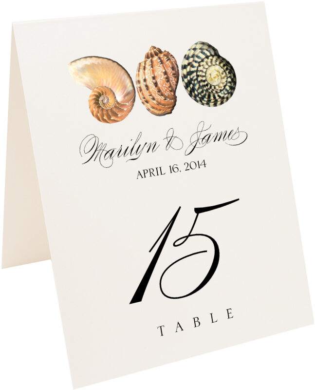 Photograph of Tented Seashell Pattern 01 Table Numbers
