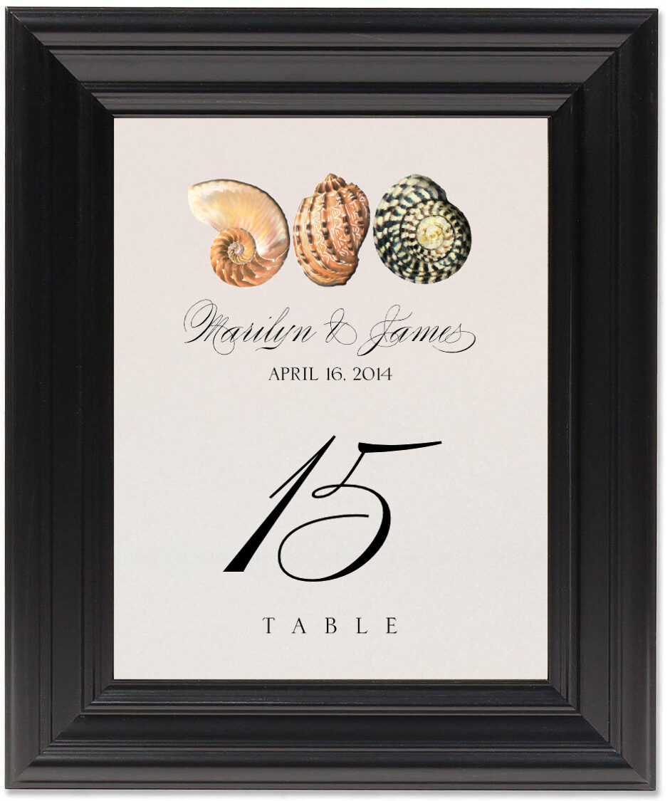 Framed Photograph of Seashell Pattern 01 Table Numbers