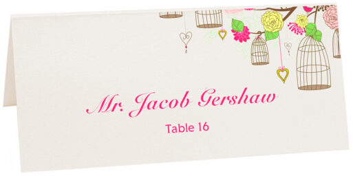 Photograph of Tented Bird Cages Place Cards