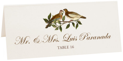 Photograph of Tented Brown Birds Place Cards