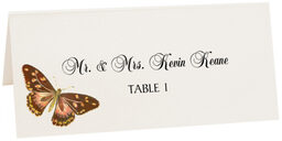 Photograph of Tented Butterfly Assortment Place Cards