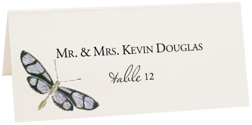 Photograph of Tented Dragonflies Place Cards