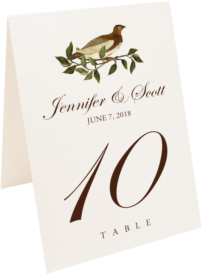 Photograph of Tented Brown Birds Table Numbers