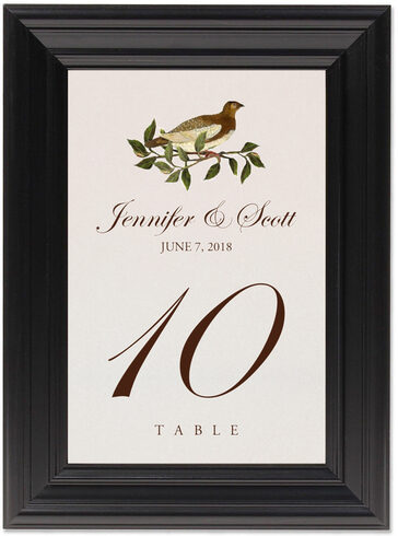 Framed Photograph of Brown Birds Table Numbers