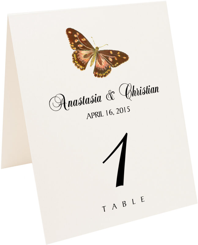 Photograph of Tented Butterfly Assortment Table Numbers