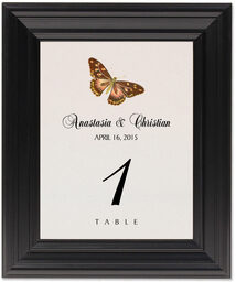 Framed Photograph of Butterfly Assortment Table Numbers