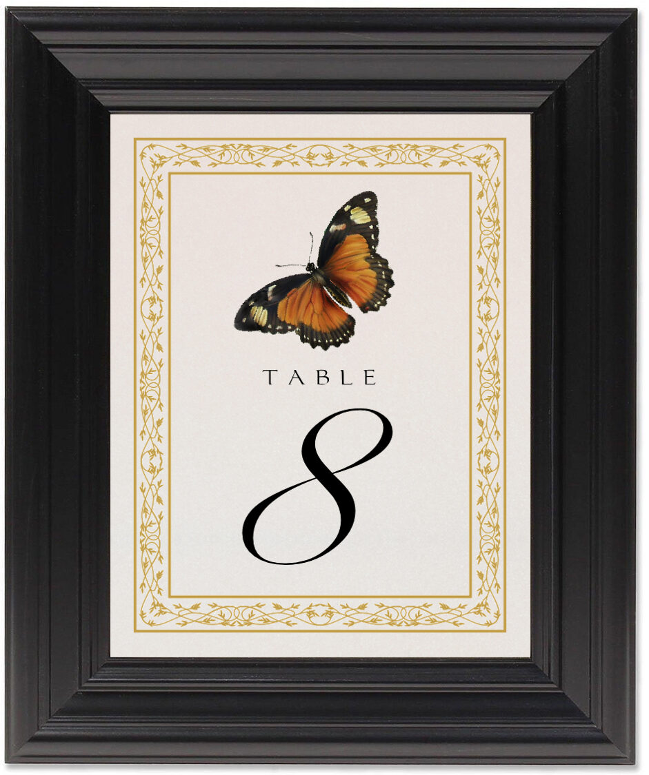 Framed Photograph of Monarch Butterfly Table Numbers