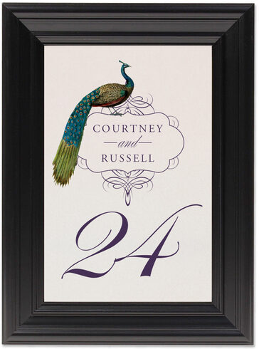 Framed Photograph of Peacock Flourish Swirl Table Numbers