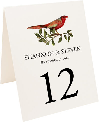 Photograph of Tented Red Bird 01 Table Numbers