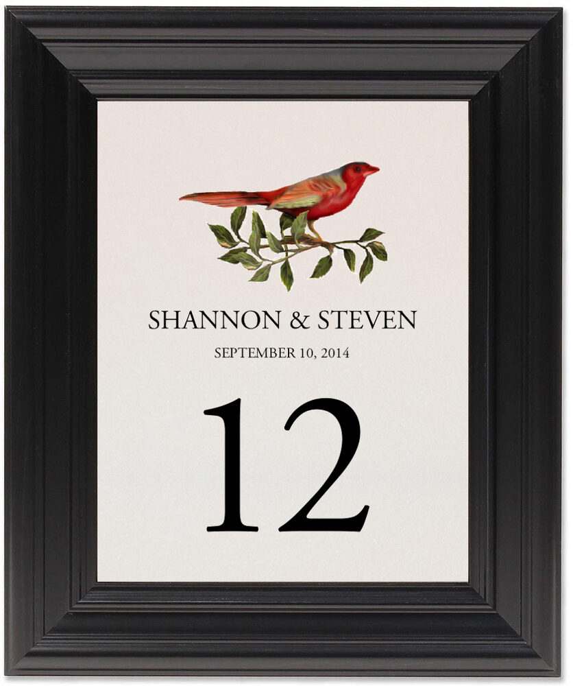 Framed Photograph of Red Bird 01 Table Numbers