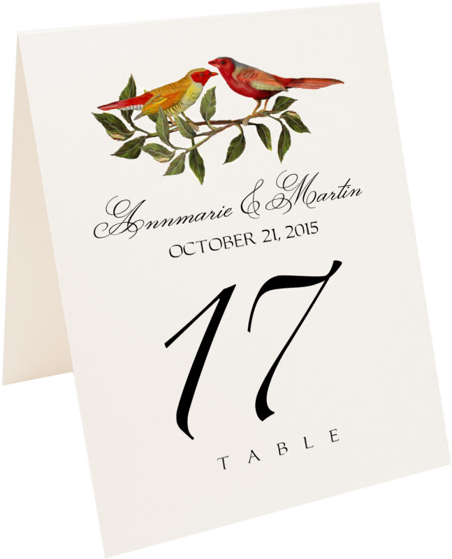 Photograph of Tented Two Red Birds Table Numbers
