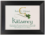 Framed Photograph of Wispy Shamrock Memorabilia Cards