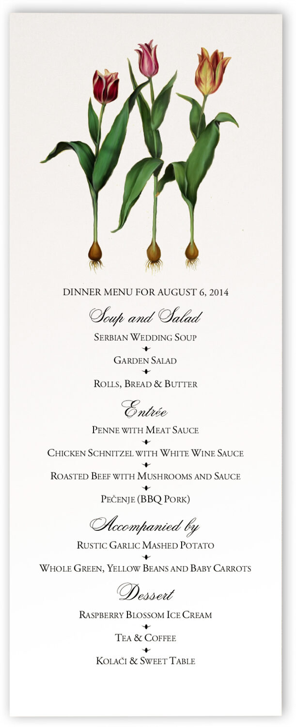 Photograph of Tulip Bulbs Wedding Menus