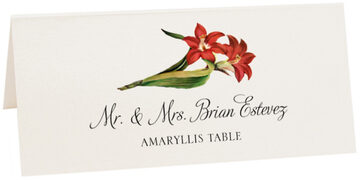 Photograph of Tented Amaryllis Place Cards