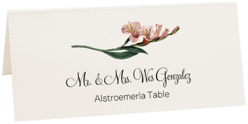 Photograph of Tented Assorted Flowers Place Cards