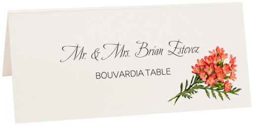 Photograph of Tented Bouvardia Place Cards