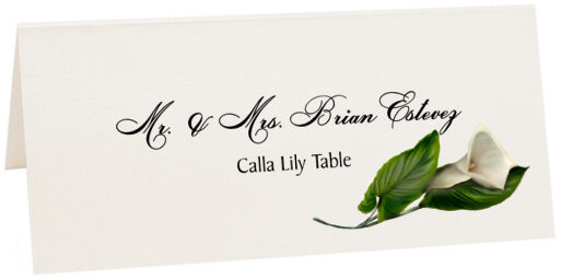 Photograph of Tented Calla Lily Place Cards