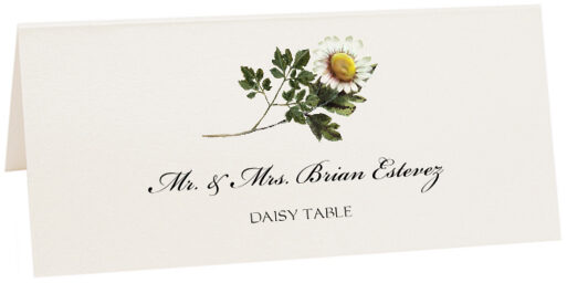 Photograph of Tented Daisy Place Cards