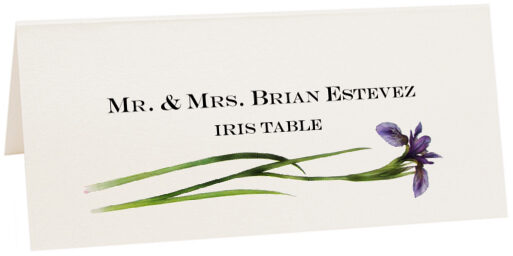 Photograph of Tented Iris Place Cards