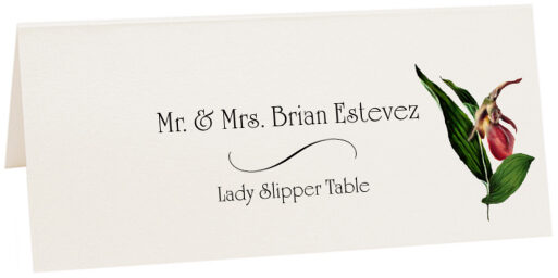 Photograph of Tented Lady Slipper Place Cards