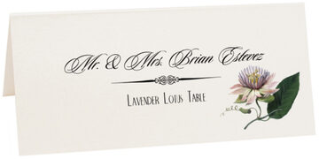Photograph of Tented Lavender Lotus Place Cards