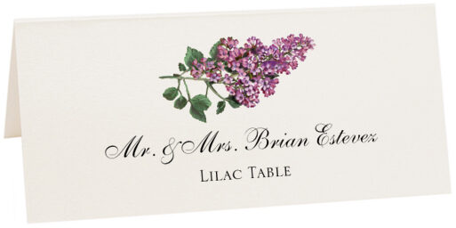 Photograph of Tented Lilac Place Cards