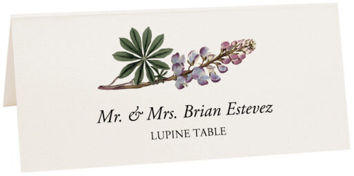 Photograph of Tented Lupine Place Cards
