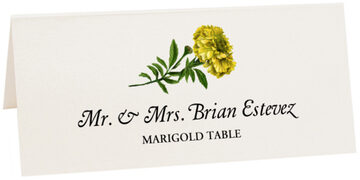 Photograph of Tented Marigold Place Cards