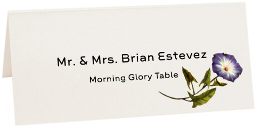 Photograph of Tented Morning Glory Place Cards