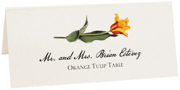 Photograph of Tented Orange Tulip Place Cards