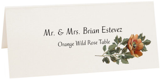 Photograph of Tented Orange Wild Rose Place Cards