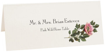 Photograph of Tented Pink Wild Rose Place Cards