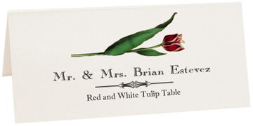 Photograph of Tented Red and White Tulip Place Cards