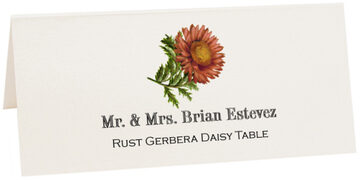 Photograph of Tented Rust Gerbera Daisy Place Cards