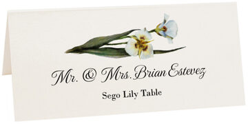 Photograph of Tented Sego Lily Place Cards