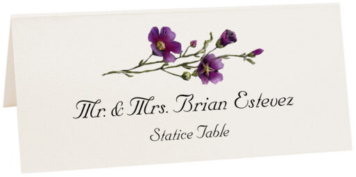 Photograph of Tented Statice Place Cards