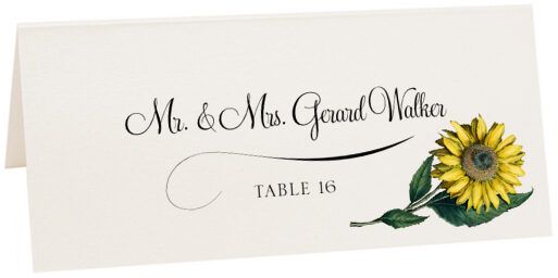 Photograph of Tented Sunflower Place Cards