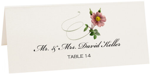 Photograph of Tented Wild Pink Rose Swirl Place Cards