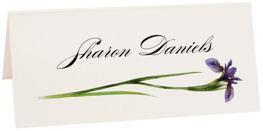 Photograph of Tented Wispy Iris Place Cards