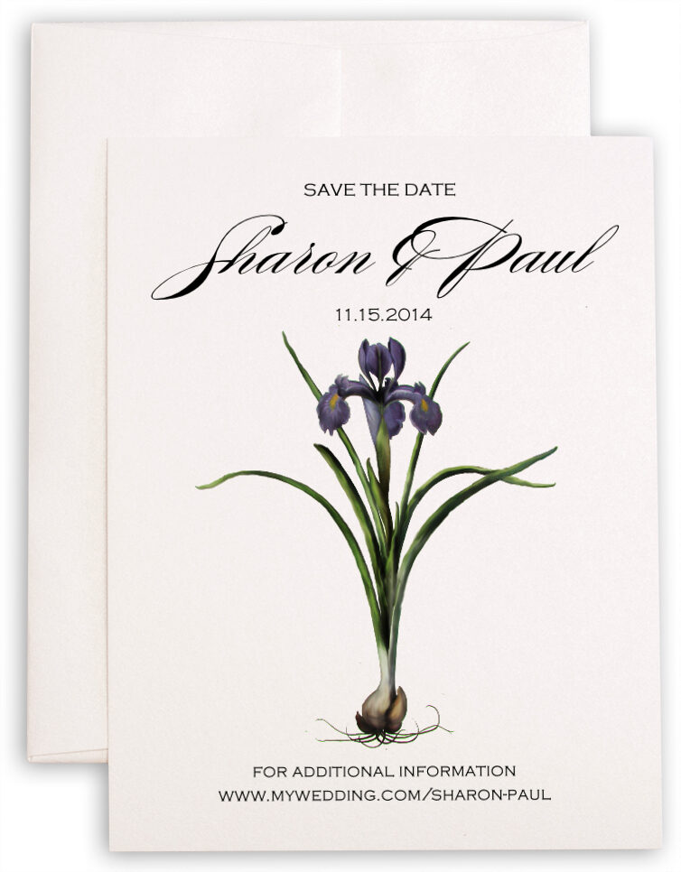 Photograph of Iris Bulb Save the Dates