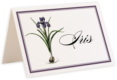 Photograph of Tented Iris Bulb Table Names