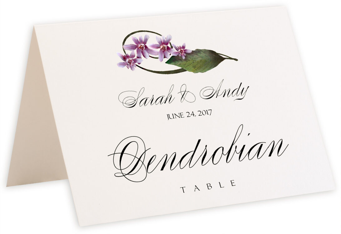 Photograph of Tented Purple Calypso Orchid Table Names