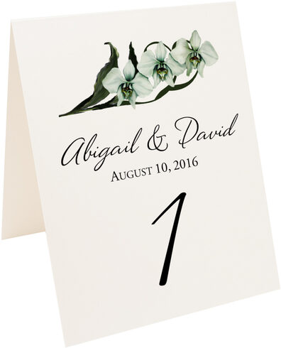 Photograph of Tented Orchid Assortment Table Numbers