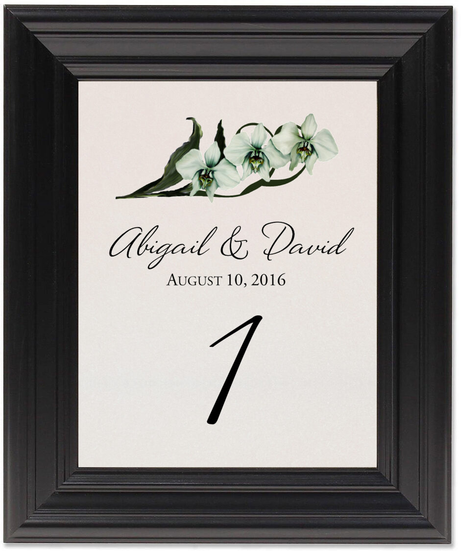Framed Photograph of Orchid Assortment Table Numbers