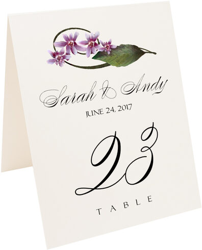 Photograph of Tented Purple Calypso Orchid Table Numbers