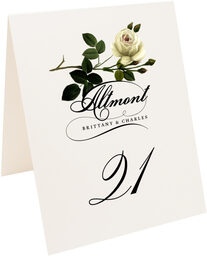 Photograph of Tented Roses Assortment Table Numbers