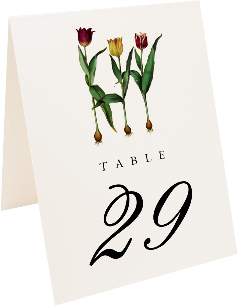 Photograph of Tented Tulip Bulbs Table Numbers