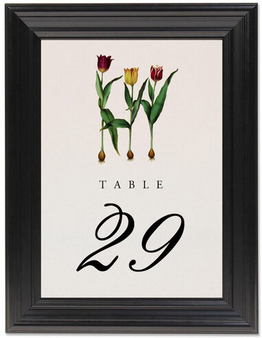 Framed Photograph of Tulip Bulbs Table Numbers