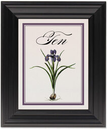 Framed Photograph of Iris Bulb Table Numbers