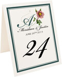 Photograph of Tented Wild Pink Rose Swirl Table Numbers